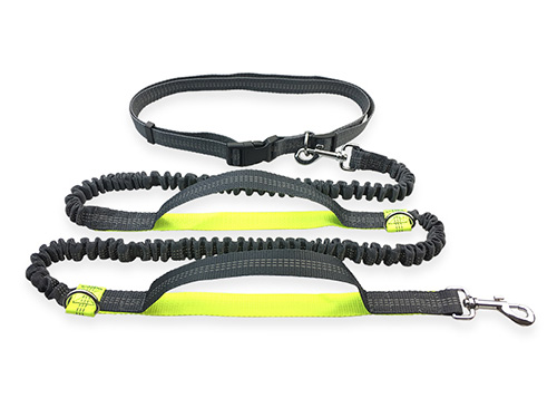 Hot Selling Wholesale Oem High Quality Double Bungee Hands Free Sport Running Pet Dog Leash