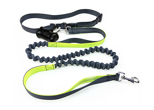 High Quality Hands Free Reflective Bungee Pet Sport Running Dog Leash With Waist Belt