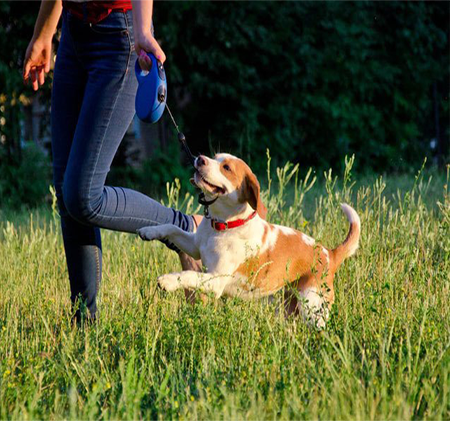 What are the benefits of automatic telescopic traction rope for dog owners
