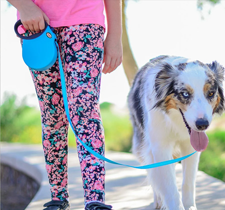 What are the benefits of using a retractable dog leash for dogs going out